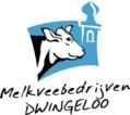 vv Dwingeloo Kabouter-toernooi